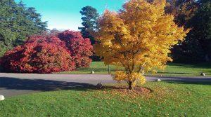 Our Autumn Programme